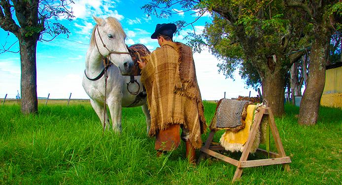 Santana do Livramento - RS -  Invernada do Sarandi no Pampa Gaúcho. Foto Duda Pinto/Fotos Publicas
