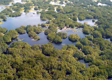 Reserva do Lago Piratuba