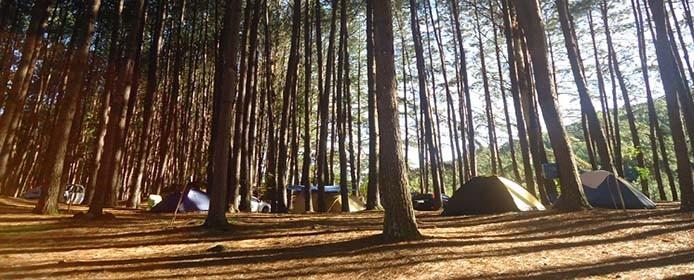 Camping Parque da Cachoeira_Divulgacao Parque da Cachoeira