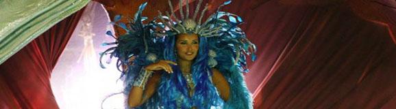 Carneval_imperatriz leopoldinense