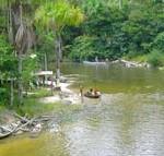 Ilha Bananal