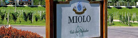 miolo1
