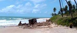 praia de coqueirinho paraiba_baixaki