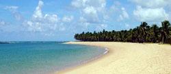 praia do francês_baixaki