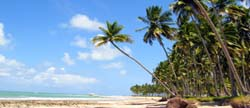 praia pontal de maracaípe